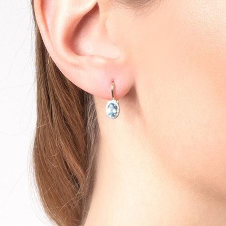 Latch back earrings